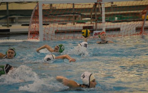Jenison water polo faces West Ottawa