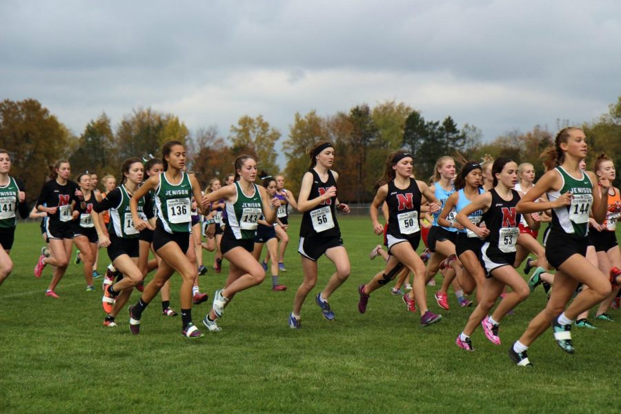 Women's Cross Country Team Impresses at Regional Meet