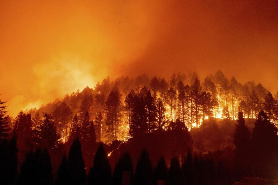 California wildfires: consuming the United States